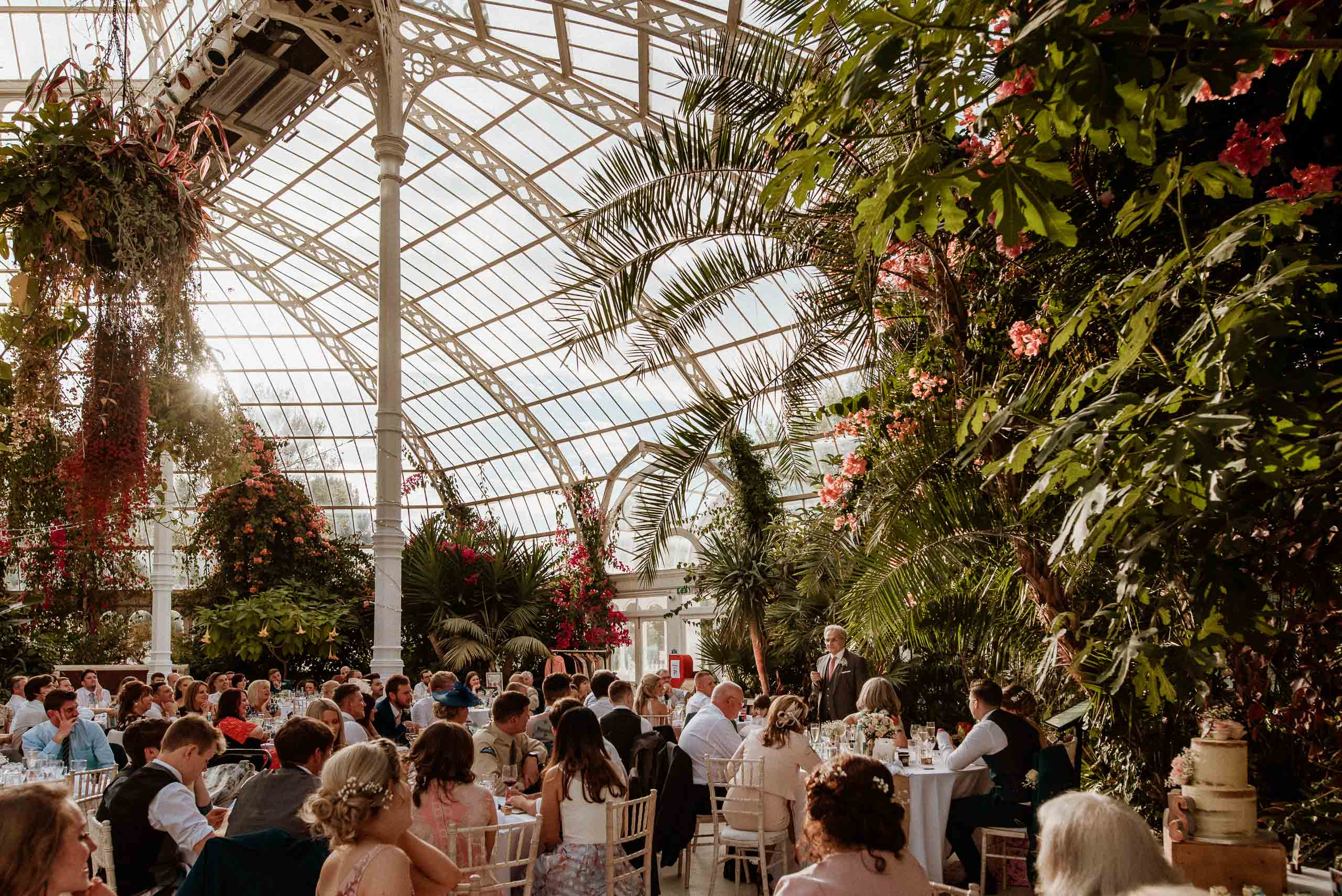 lots of wedding guests seated inside the Liverpool palm house