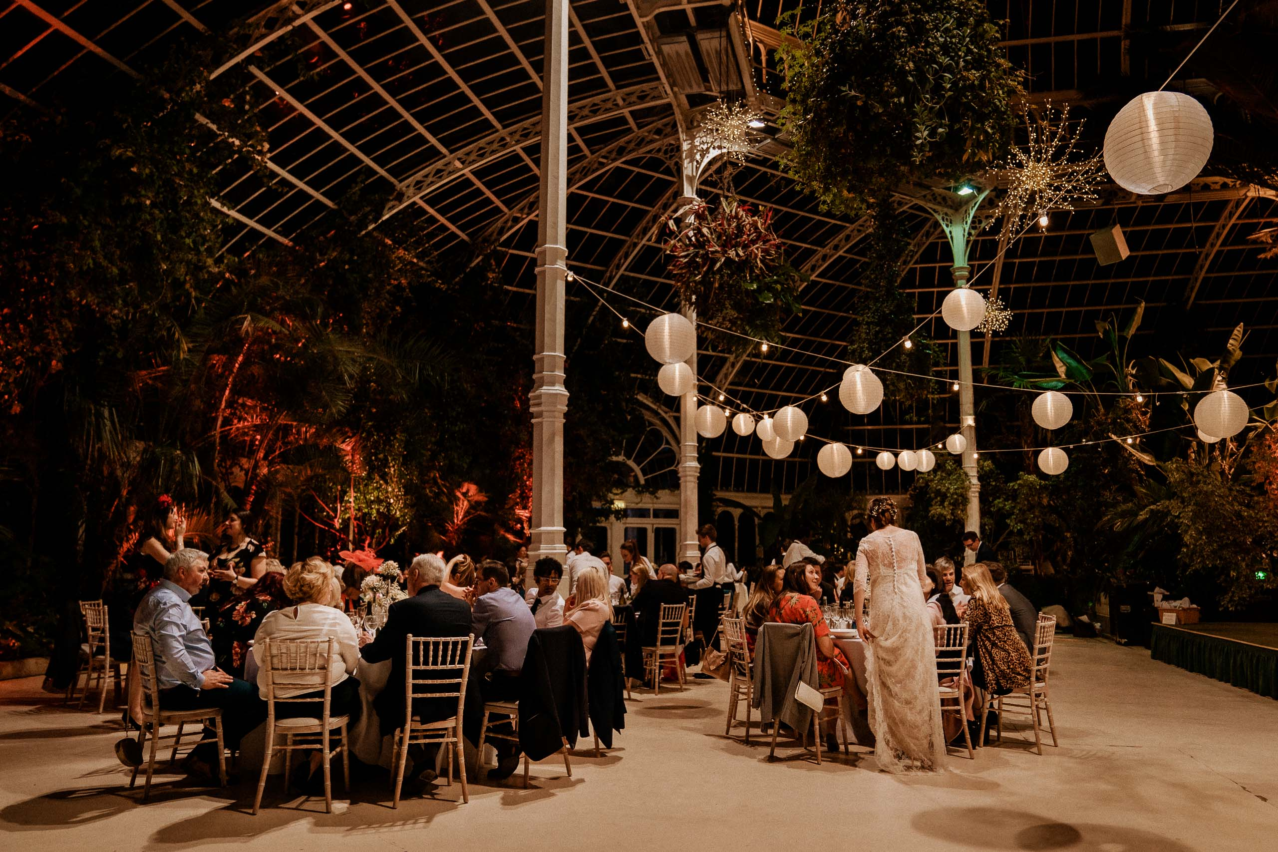 evening reception scene at the Sefton Palm House