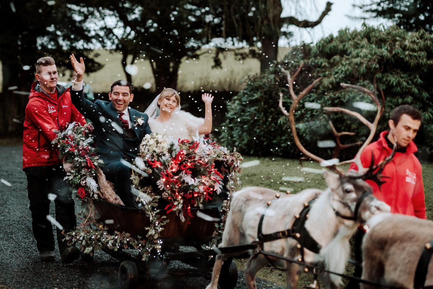 bride and groom sitting in a sleigh pulled by reindeer