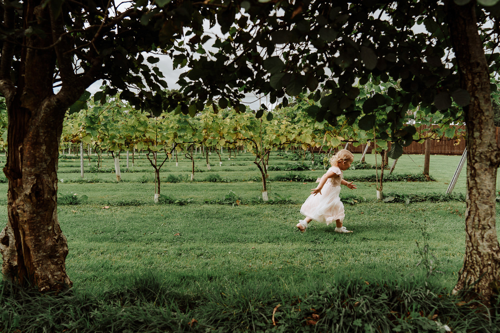 flower girl running through vineyard