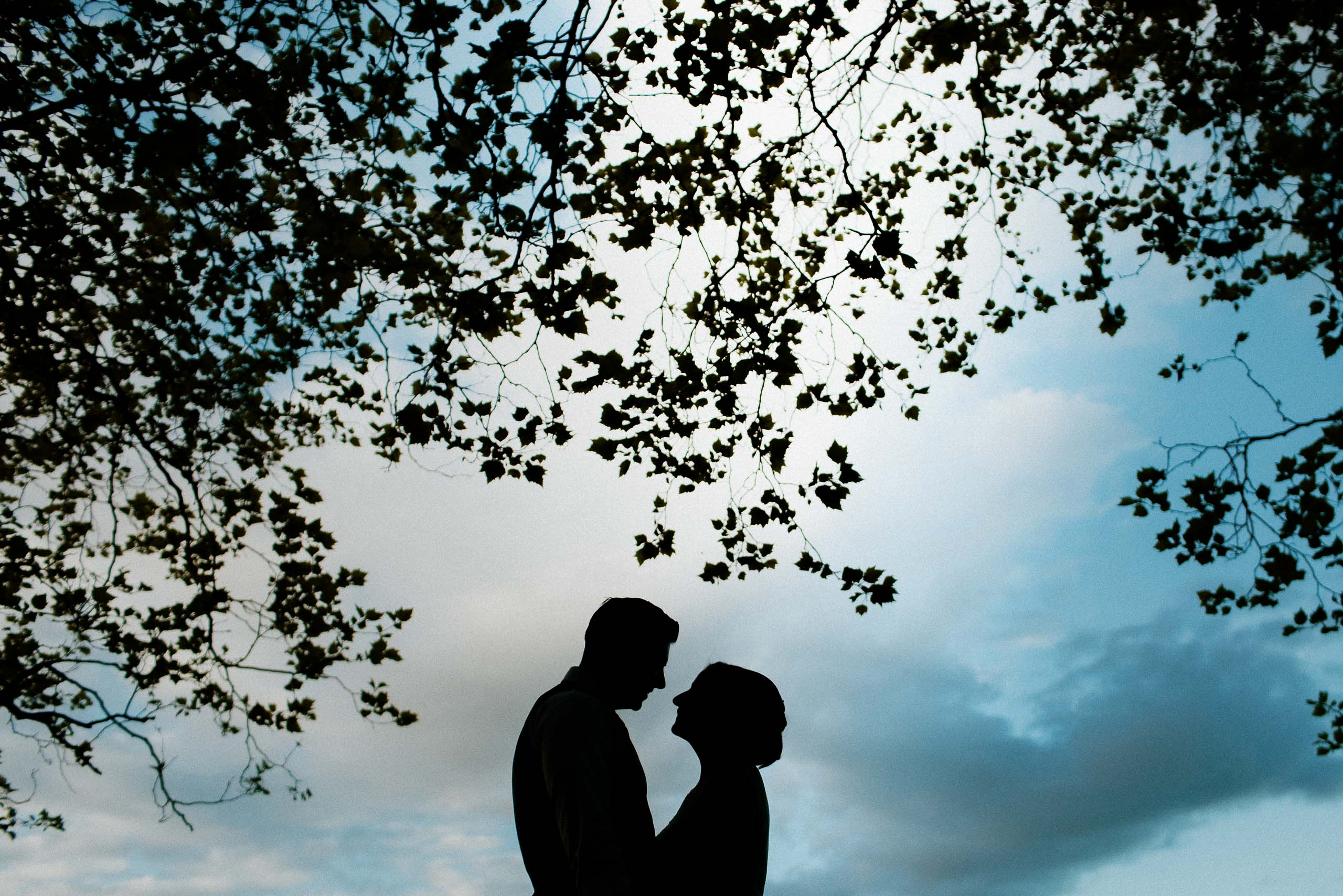 bride and groom silhouette under trees